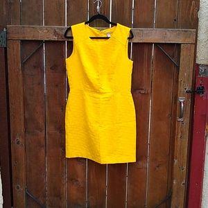 BEAUTIFUL! 🍌 Banana Republic Dress